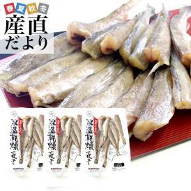 送料無料 北海道産 コマイ(氷下魚)の氷温乾燥一夜干し 約600g(200g×3袋)