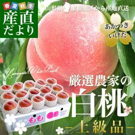 山形県 東根地区から産地直送 「厳選農家の白桃」 (あかつき・いけだ)上級品 5キロ 15から18玉