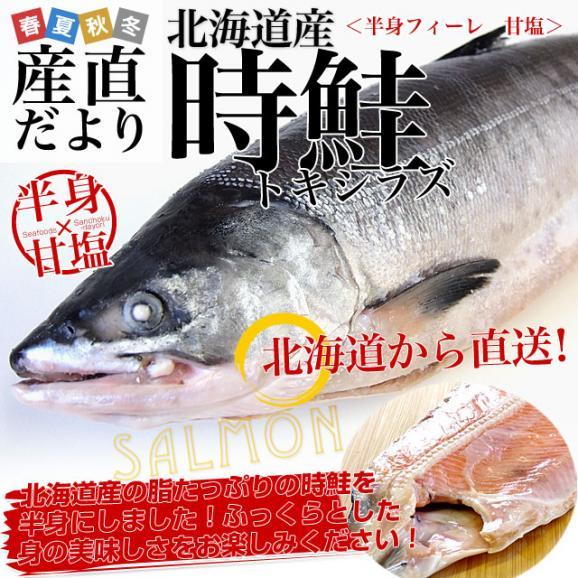 北海道から直送 北海道産 時鮭(トキシラズ)<半身フィーレ:甘塩> 900g前後 送料無料 ときさけ シャケ02