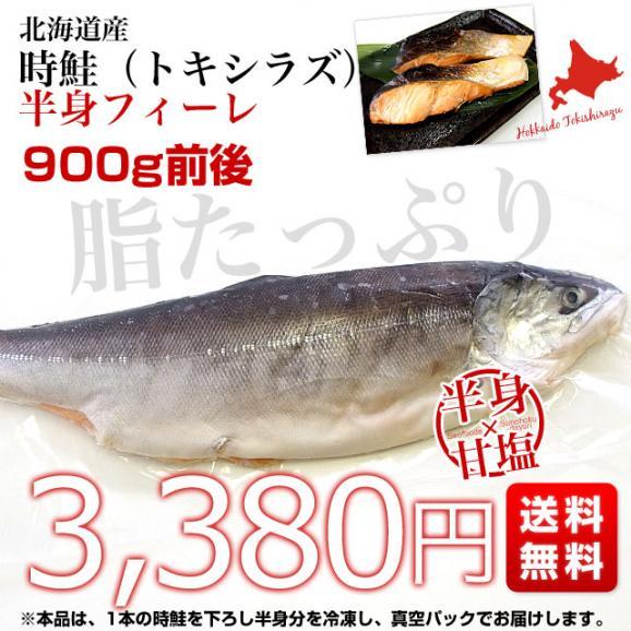 北海道から直送 北海道産 時鮭(トキシラズ)<半身フィーレ:甘塩> 900g前後 送料無料 ときさけ シャケ03