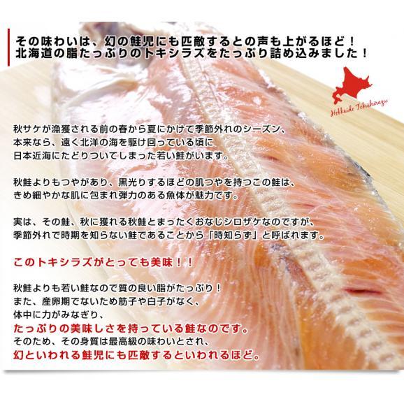 北海道から直送 北海道産 時鮭(トキシラズ)<半身フィーレ:甘塩> 900g前後 送料無料 ときさけ シャケ04