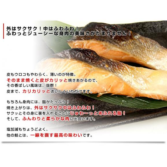 北海道から直送 北海道産 時鮭(トキシラズ)<半身フィーレ:甘塩> 900g前後 送料無料 ときさけ シャケ05