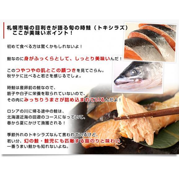 北海道から直送 北海道産 時鮭(トキシラズ)<半身フィーレ:甘塩> 900g前後 送料無料 ときさけ シャケ06