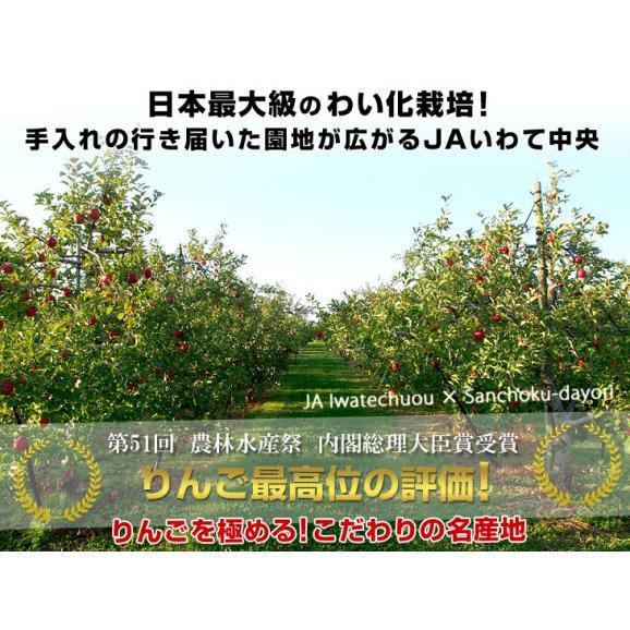 岩手県より産地直送 JAいわて中央 プレミアム サンふじりんご 特秀品 5キロ(14玉から18玉) 林檎 リンゴ  送料無料04