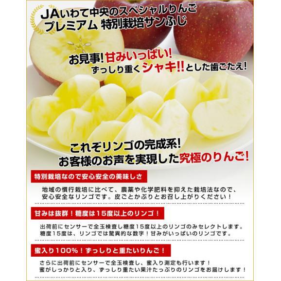 岩手県より産地直送 JAいわて中央 プレミアム サンふじりんご 特秀品 5キロ(14玉から18玉) 林檎 リンゴ  送料無料05