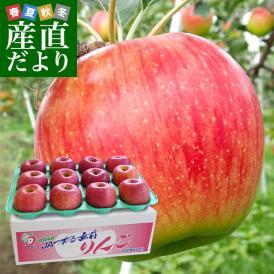 送料無料 青森県より産地直送 JAつがる弘前 極旨・産直りんご 選べる品種 約3キロ(9玉から13玉) 林檎
