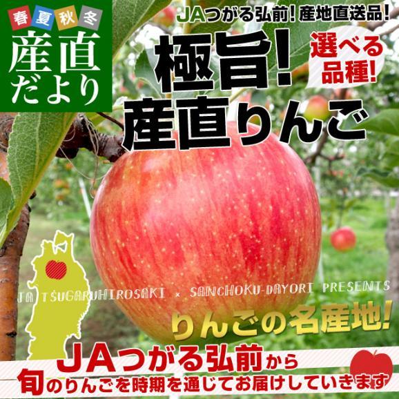 青森県より産地直送 JAつがる弘前 極旨・産直りんご 選べる品種 約3キロ(9玉から13玉) 林檎  送料無料 02