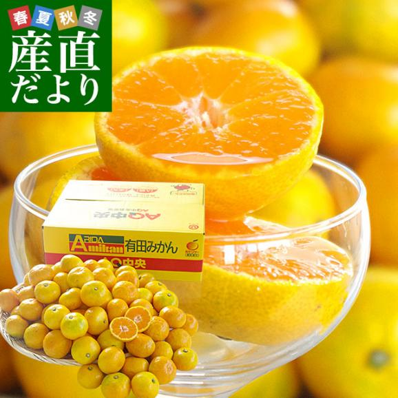 和歌山県より産地直送 JAありだ ゆら早生みかん 5キロ SからSSサイズ 蜜柑 ミカン 送料無料01