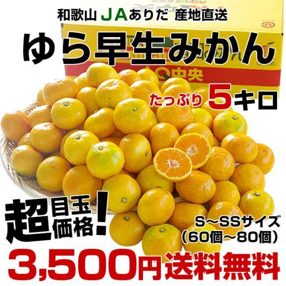 送料無料 和歌山県より産地直送 JAありだ ゆら早生みかん 5キロ SからSSサイズ 蜜柑 ミカン03