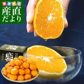 最高級果実!栽培技術を駆使して育てたプレミアム品!選び抜かれた一雫。