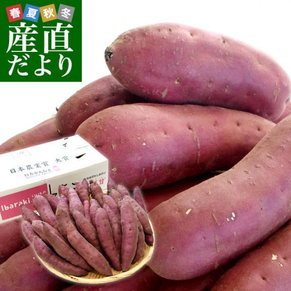 茨城県より産地直送 JAなめがたしおさい さつまいも「紅優甘 (べにゆうか)」 Sサイズ 5キロ(25本から30本) 送料無料 さつま芋 サツマイモ 薩摩芋01