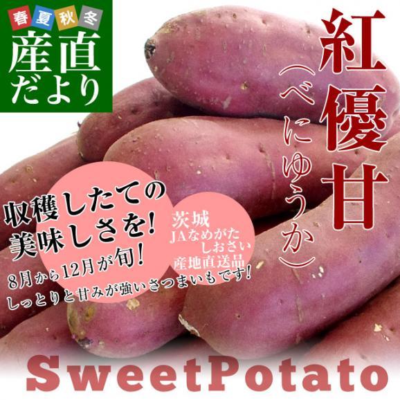 茨城県より産地直送 JAなめがたしおさい さつまいも「紅優甘 (べにゆうか)」 Sサイズ 5キロ(25本から30本) 送料無料 さつま芋 サツマイモ 薩摩芋02