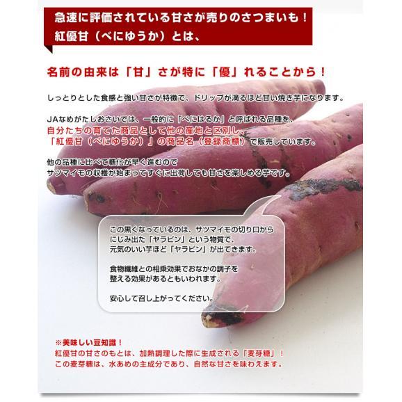 茨城県より産地直送 JAなめがたしおさい さつまいも「紅優甘 (べにゆうか)」 Sサイズ 5キロ(25本から30本) 送料無料 さつま芋 サツマイモ 薩摩芋04