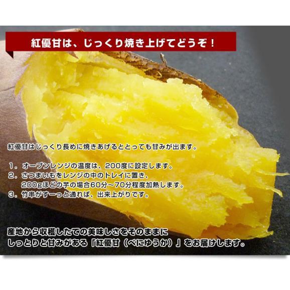 茨城県より産地直送 JAなめがたしおさい さつまいも「紅優甘 (べにゆうか)」 Sサイズ 5キロ(25本から30本) 送料無料 さつま芋 サツマイモ 薩摩芋06