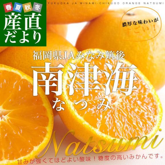 福岡県より産地直送 JAみなみ筑後 南津海(なつみ) 秀品 LからSサイズ 約5キロ 柑橘 オレンジ 02