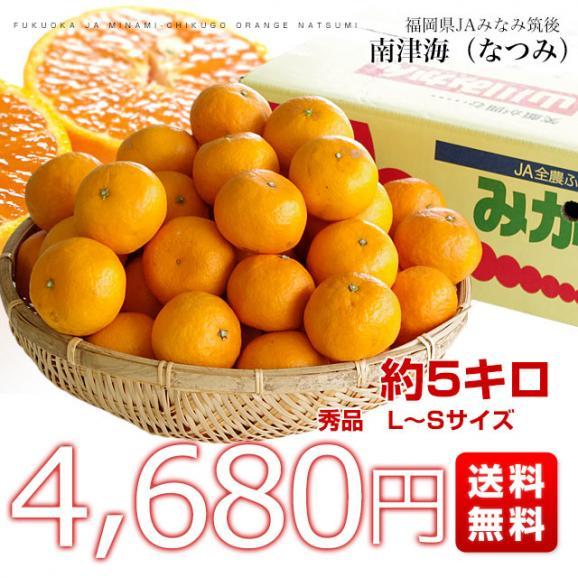 福岡県より産地直送 JAみなみ筑後 南津海(なつみ) 秀品 LからSサイズ 約5キロ 柑橘 オレンジ 03