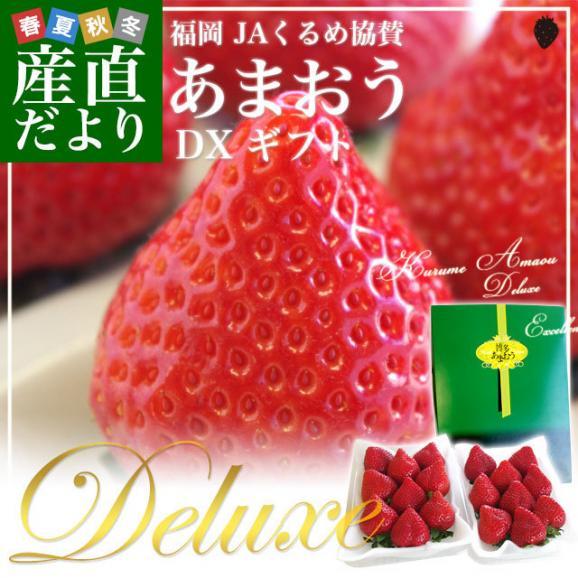 福岡県より産地直送 JAくるめ あまおういちご DX:ギフト用デラックス 約540g(270g×2パック) 送料無料 苺 いちご イチゴストロベリー02