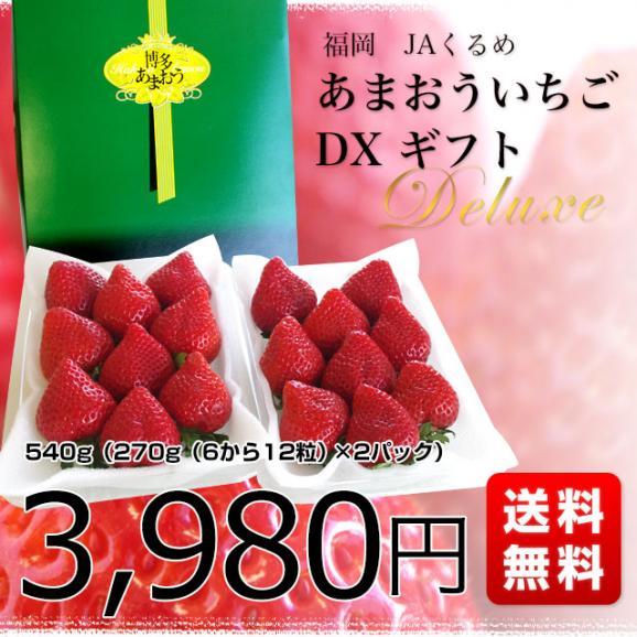福岡県より産地直送 JAくるめ あまおういちご DX:ギフト用デラックス 約540g(270g×2パック) 送料無料 苺 いちご イチゴストロベリー03