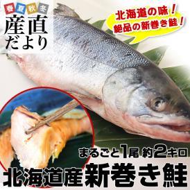 北海道から産地直送 北海道産 新巻き鮭(甘塩) まるごと1尾 2キロ 送料無料 さけ サケ