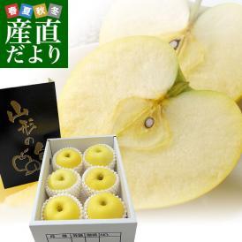 山形県より産地直送 朝日町アップルズ はるか 秀品 2キロ(5玉から8玉) 送料無料 林檎 りんご リンゴ