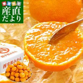 愛媛県より産地直送 JAにしうわ 西宇和みかん LからSサイズ 5キロ (約40から60玉) 送料無料 ミカン 蜜柑