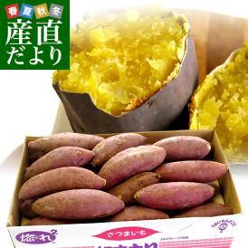 茨城県より産地直送 JAなめがた さつまいも「紅まさり(べにまさり)」 Mサイズ 約5キロ(18本前後) 送料無料 さつま芋 サツマイモ 薩摩芋