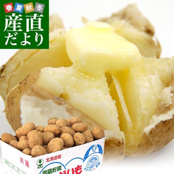 北海道より産地直送 JAとうや湖 雪蔵貯蔵じゃがいも (男爵) Lサイズ 10キロ  送料無料 芋 ジャガイモ 馬鈴薯01