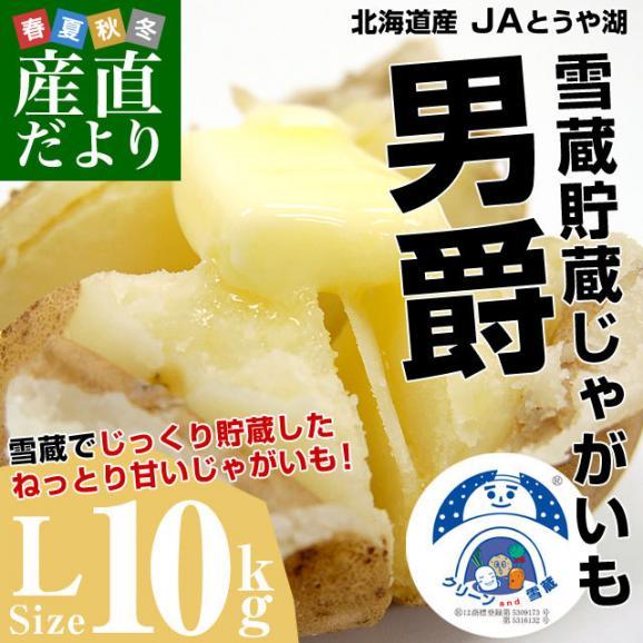 北海道より産地直送 JAとうや湖 雪蔵貯蔵じゃがいも (男爵) Lサイズ 10キロ  送料無料 芋 ジャガイモ 馬鈴薯02