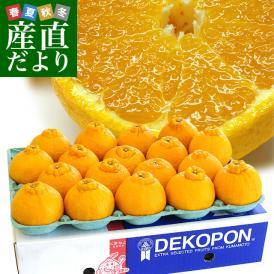 熊本県から産地直送 JAあまくさ ハウス栽培デコポン 3L 5キロ (18玉) でこぽん しらぬひ 不知火 天草 送料無料