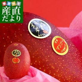 宮崎県より産地直送 JA宮崎中央 太陽のタマゴ 最高級AA品 5Lサイズ (650g以上×1玉) 送料無料 マンゴー たいようのたまご