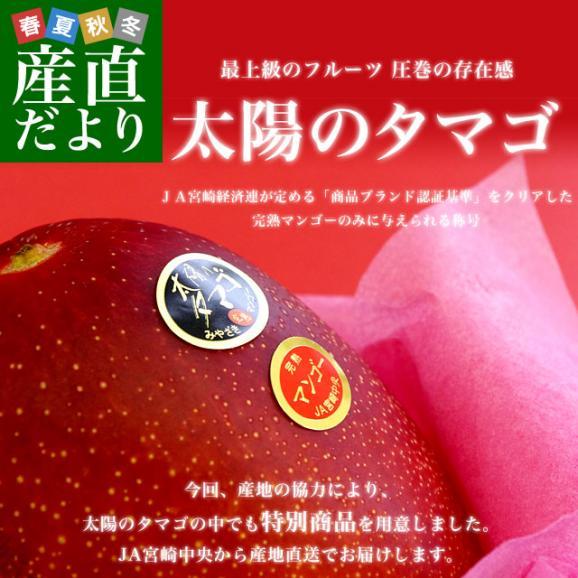 宮崎県より産地直送 JA宮崎中央 太陽のタマゴ 最高級AA品 5Lサイズ (650g以上×1玉) 送料無料 マンゴー たいようのたまご02