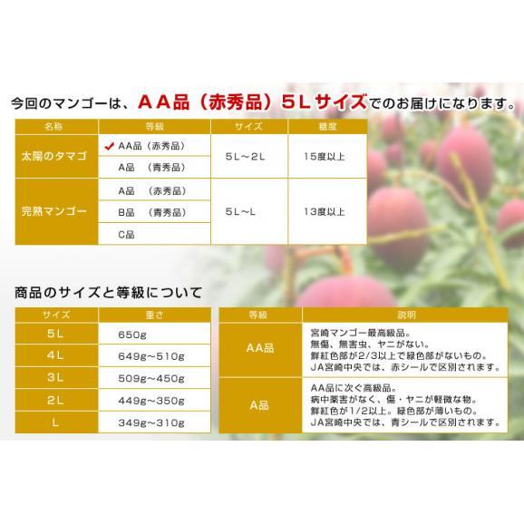宮崎県より産地直送 JA宮崎中央 太陽のタマゴ 最高級AA品 5Lサイズ (650g以上×1玉) 送料無料 マンゴー たいようのたまご04