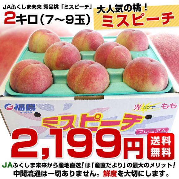 送料無料 福島県より産地直送 JAふくしま未来 ミスピーチ 秀品桃 約2キロ(7から9玉) もも02