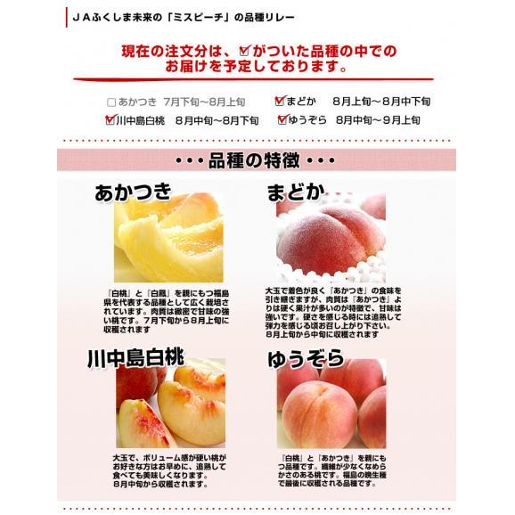 送料無料 福島県より産地直送 JAふくしま未来 ミスピーチ 秀品桃 約2キロ(7から9玉) もも03