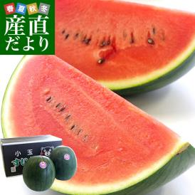 熊本県より産地直送 JA熊本市 黒小玉スイカ(ひとりじめBONBON) 3Lサイズ 約5キロ (2.5キロ以上×2玉) 西瓜 すいか