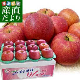 青森県より産地直送 JAつがる弘前 ふじ (有袋栽培) CA貯蔵品 約3キロ (9から13玉) 送料無料 りんご リンゴ 林檎