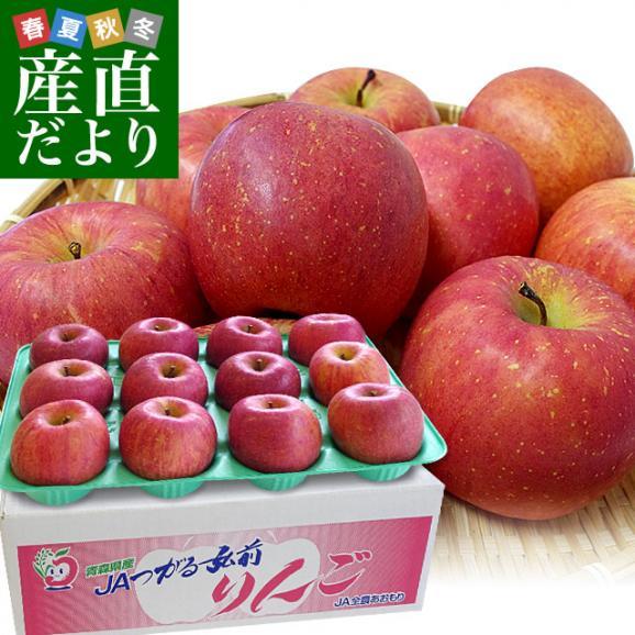 青森県より産地直送 JAつがる弘前 ふじ (有袋栽培) CA貯蔵品 約3キロ (9から13玉) 送料無料 りんご リンゴ 林檎01