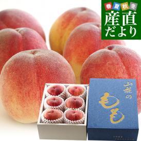 超一流産地の桃を産地直送でお届けします。