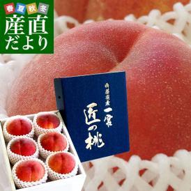 桃の生産日本最大級を誇る桃源郷の里、一宮のもも!