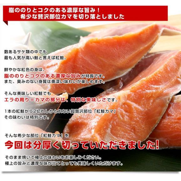 送料無料 北海道から直送 北海道加工 脂たっぷりの紅鮭カマ(ロシア産)500g(約4から7切)×2袋セット04