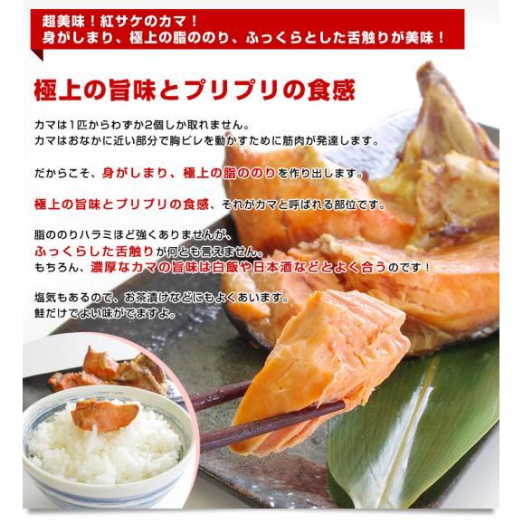 送料無料 北海道から直送 北海道加工 脂たっぷりの紅鮭カマ(ロシア産)500g(約4から7切)×2袋セット05