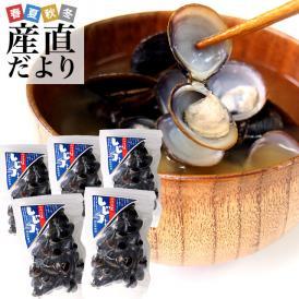 送料無料 北海道より産地直送 北海道湧別町産 大粒しじみ 約1キロ(200g×5袋)