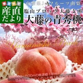 山梨県より産地直送 JAフルーツ山梨 大藤支所 大藤の桃 約5キロ (16から18玉) 桃 Peach もも