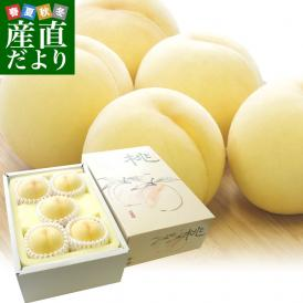 岡山 総社生産もも生産組合こだわりの高級白桃「総社の桃」