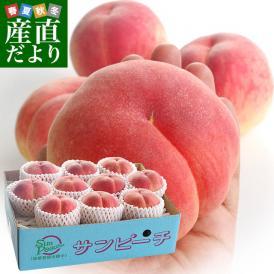 送料無料 福島県より産地直送 JAふくしま未来 最高級ブランド桃「サンピーチ」 3キロ(10から12玉) 桃 もも