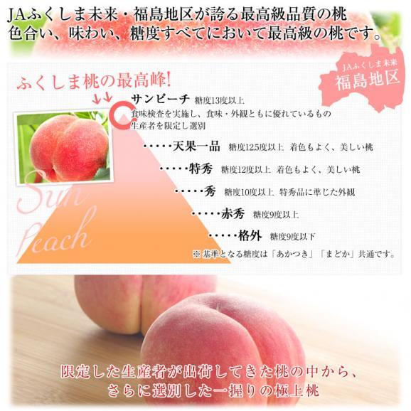 福島県より産地直送 JAふくしま未来 最高級ブランド桃 「サンピーチ」3キロ(9から11玉)04