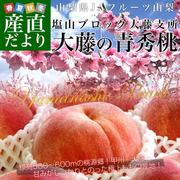 山梨県より産地直送 JAフルーツ山梨 大藤支所 大藤の桃 約5キロ (13から16玉) 桃 Peach もも01