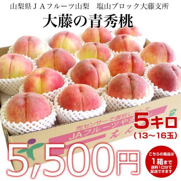 山梨県より産地直送 JAフルーツ山梨 大藤支所 大藤の桃 約5キロ (13から16玉) 桃 Peach もも02