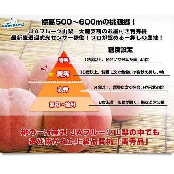 山梨県より産地直送 JAフルーツ山梨 大藤支所 大藤の桃 約5キロ (13から16玉) 桃 Peach もも03