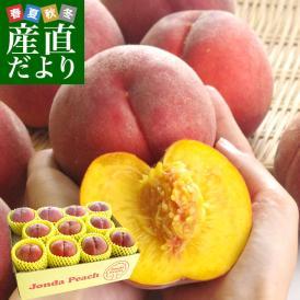 山形県より産地直送 JAさくらんぼひがしね 大富支所 究極の黄金桃 ジョンダピーチ 約3キロ (9玉から12玉) 送料無料 桃 モモ もも